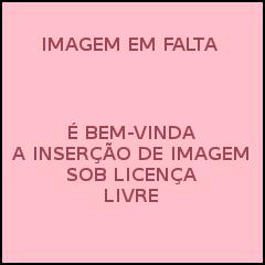 Veja o que saiu no Migalhas sobre Constituição do Estado do Pará