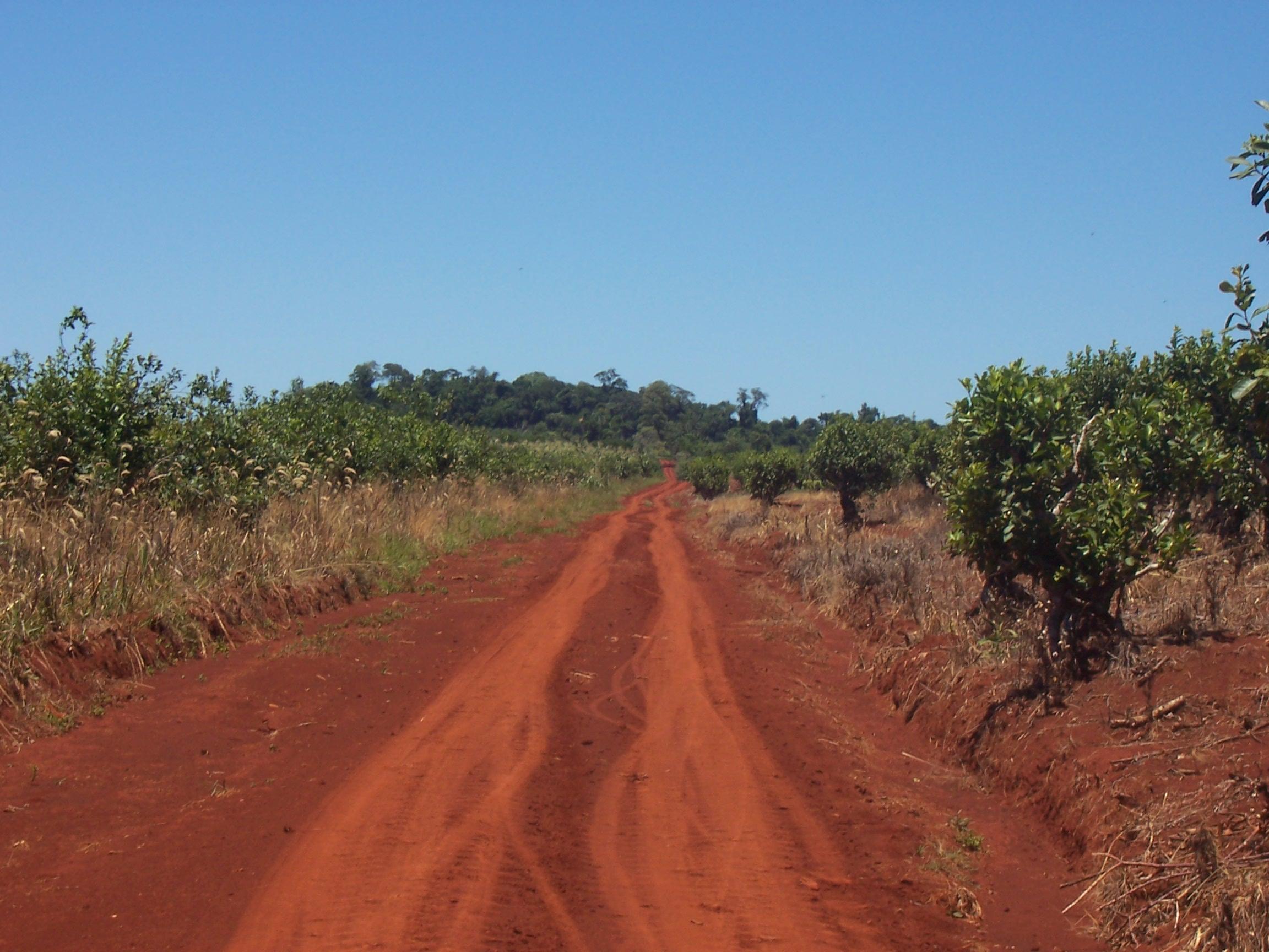 Meseta misionera 466 diversidad del medio natural - Fotos terras ...