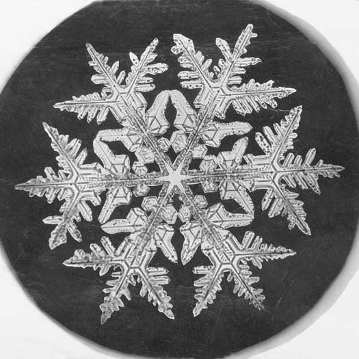 Wilson A. Bentley snowflake, 1890