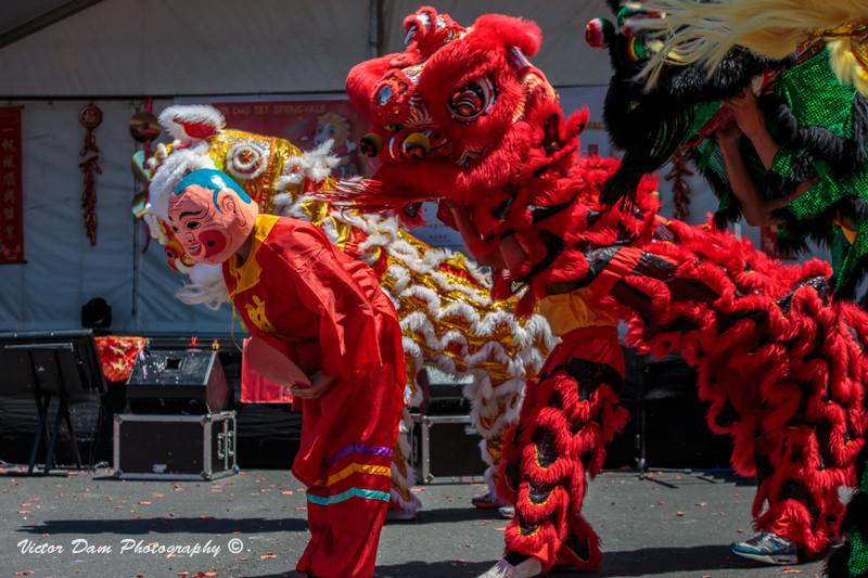 Празднование китайского нового года (2)