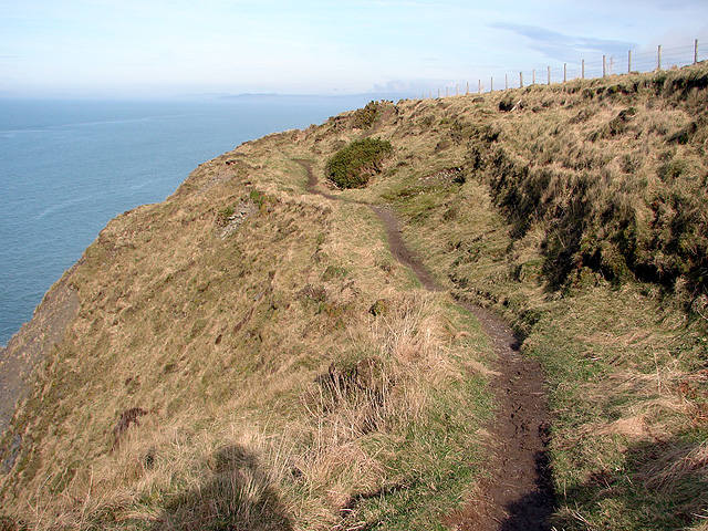 A precipitous section of the Ceredigion Coastal Path - geograph.org.uk - 1168010