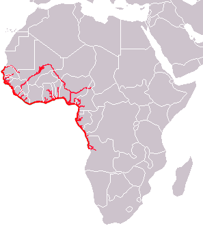 African Manatee area.png