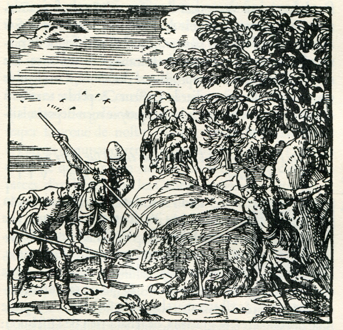 File:Ancient Athenians slaughter a bear - Thevet André - 1556.jpg