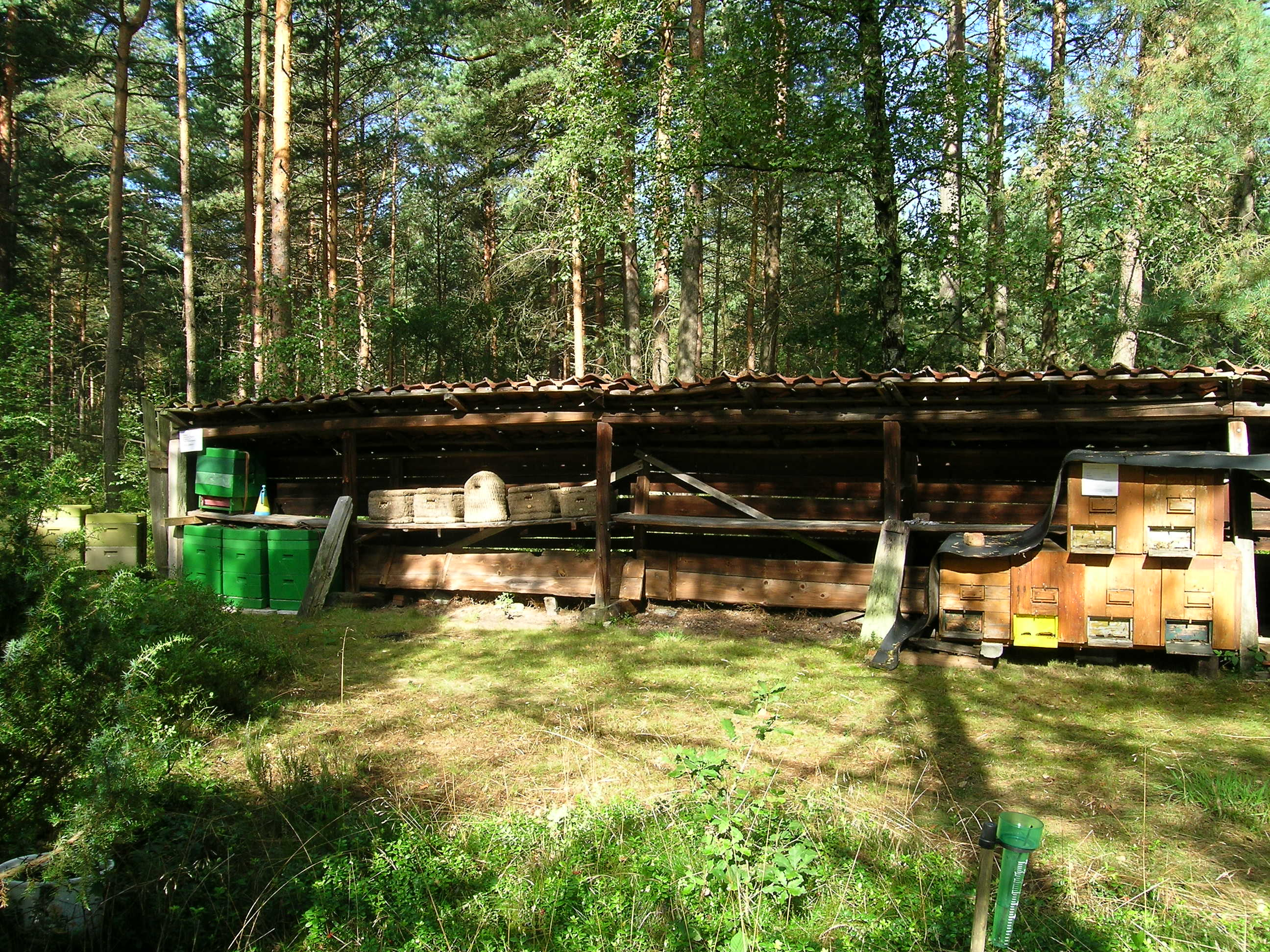 The Beehive Farm And Kitchen Lipa Menu