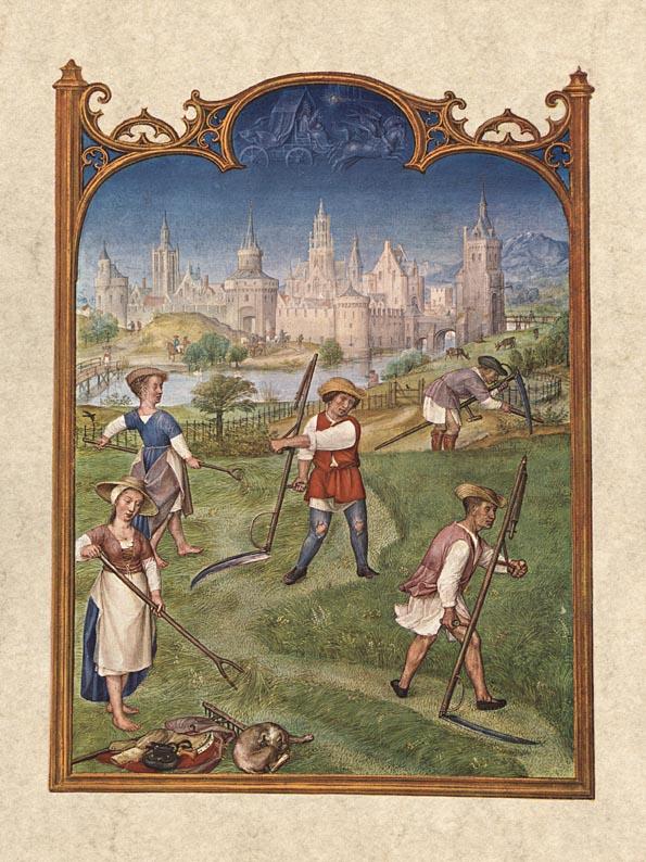 Fief depiction in book of hours: June, in Brevarium Grimani.