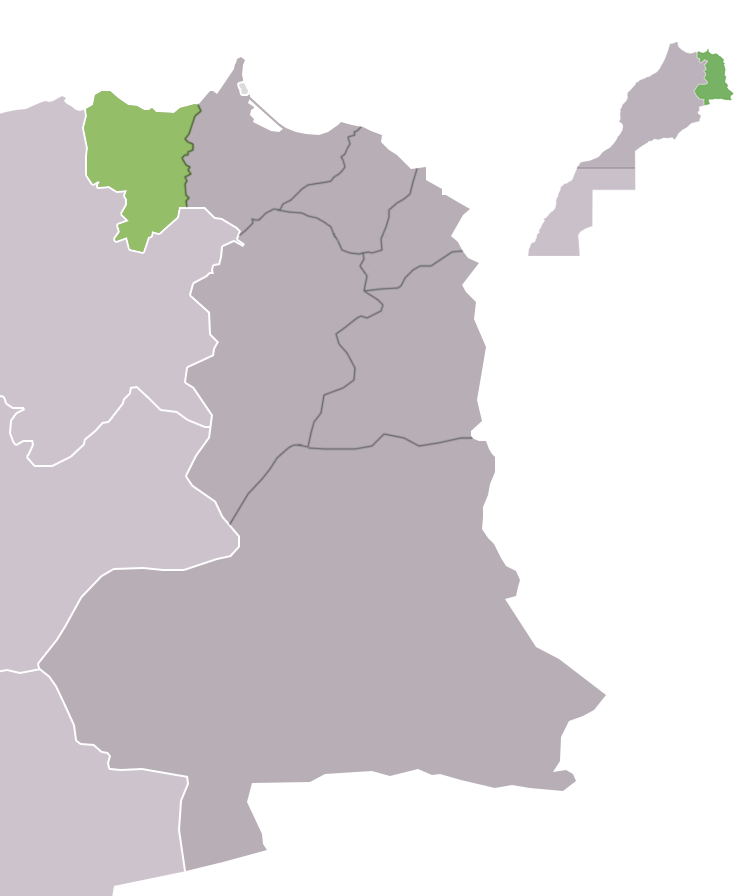 Driouch Province