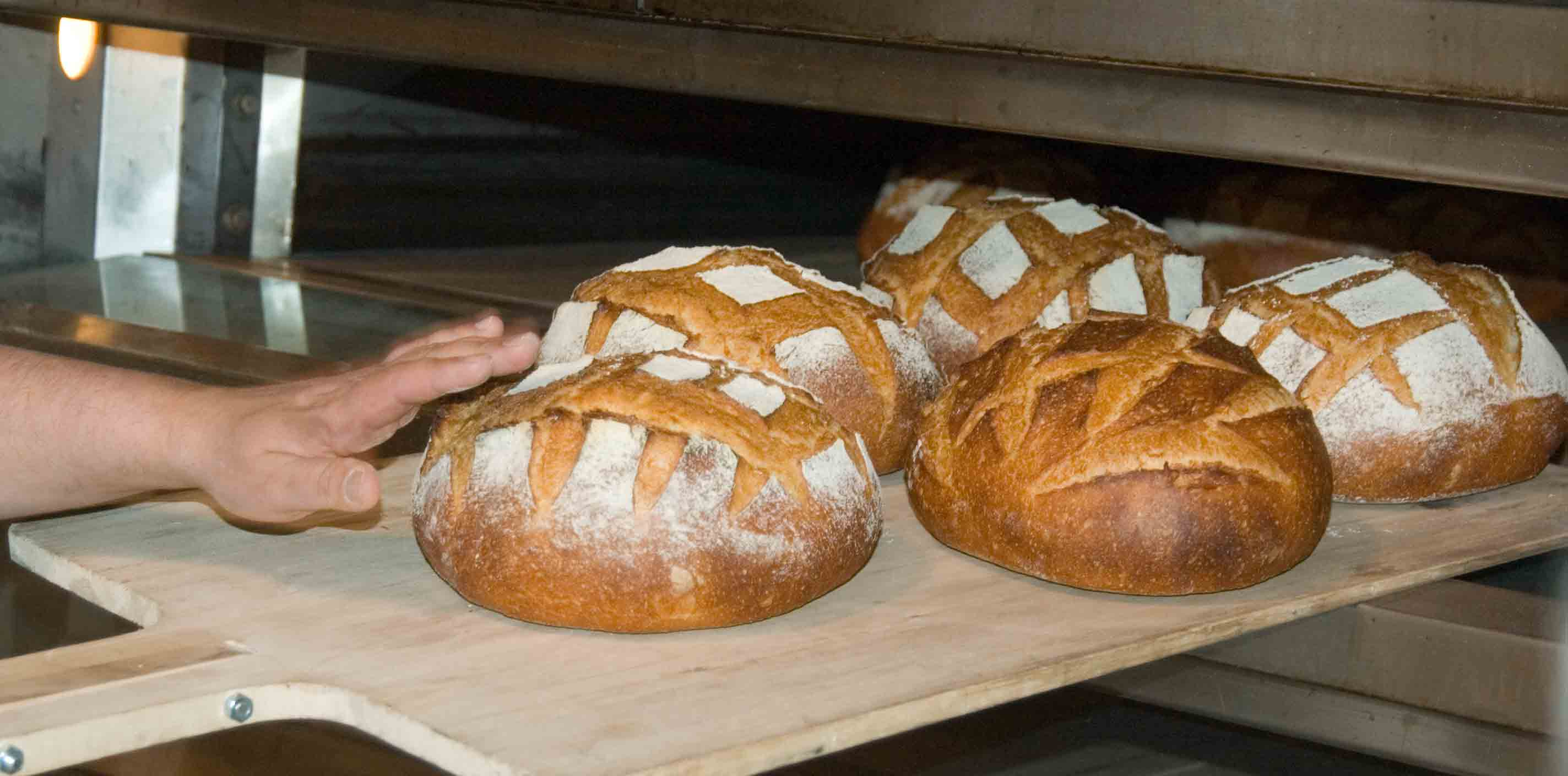 http://upload.wikimedia.org/wikipedia/commons/b/ba/Freshly_baked_bread_loaves.jpg