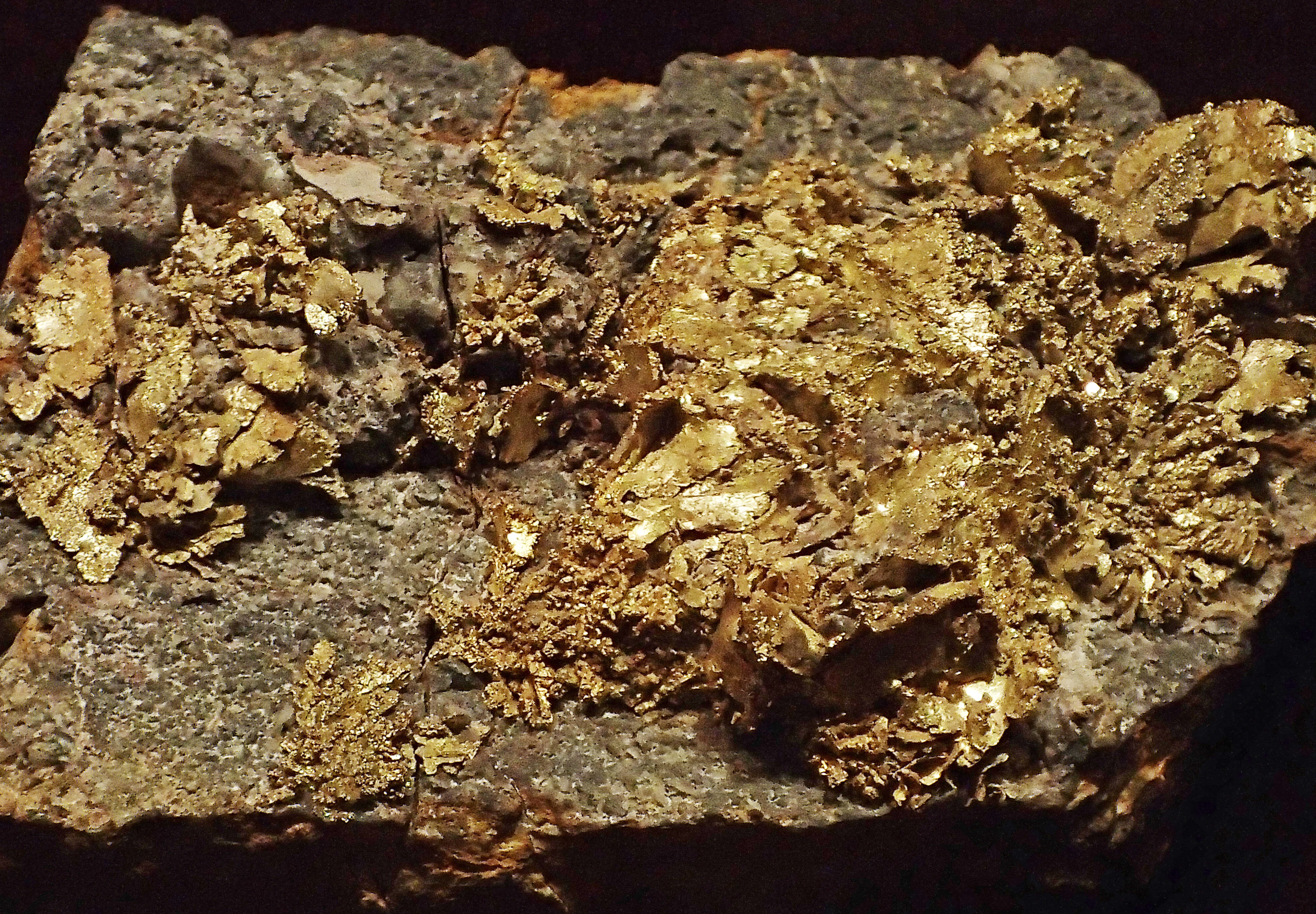 File Gold Dixie Mine Idaho Springs Colorado Usa 3