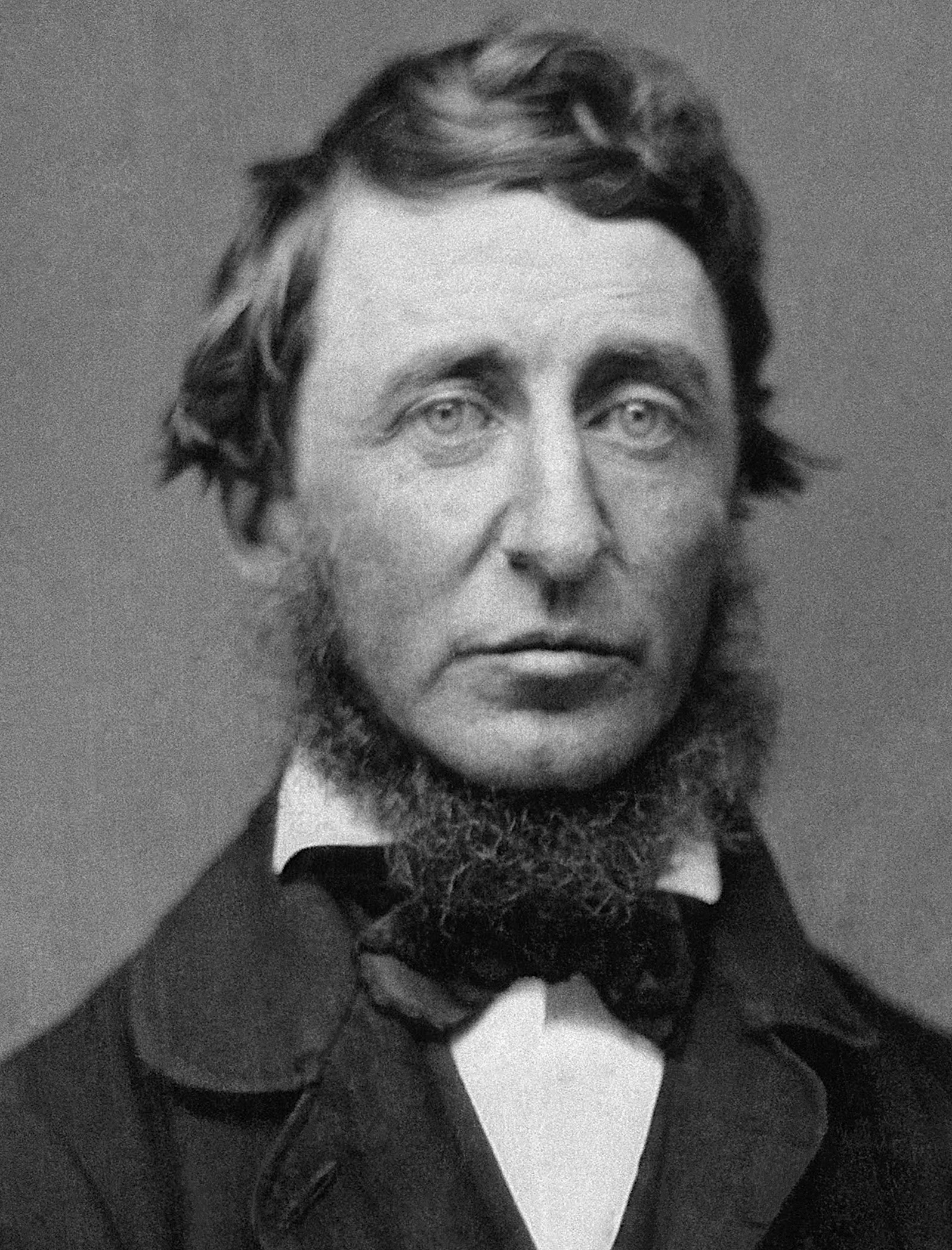 Portrait by Benjamin D. Maxham ([[daguerreotype]]) of Henry David Thoreau in June 1856.