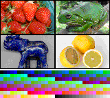 IndexedColorSample (Mosaic).png