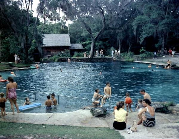 File Juniper Springs Ocala National Forest Florida 9507193991 Jpg Wikimedia Commons