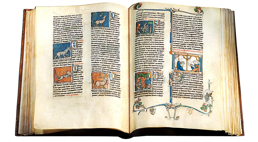 Biblioteca Wikipedia La Enciclopedia Libre | Download PDF - photo#43
