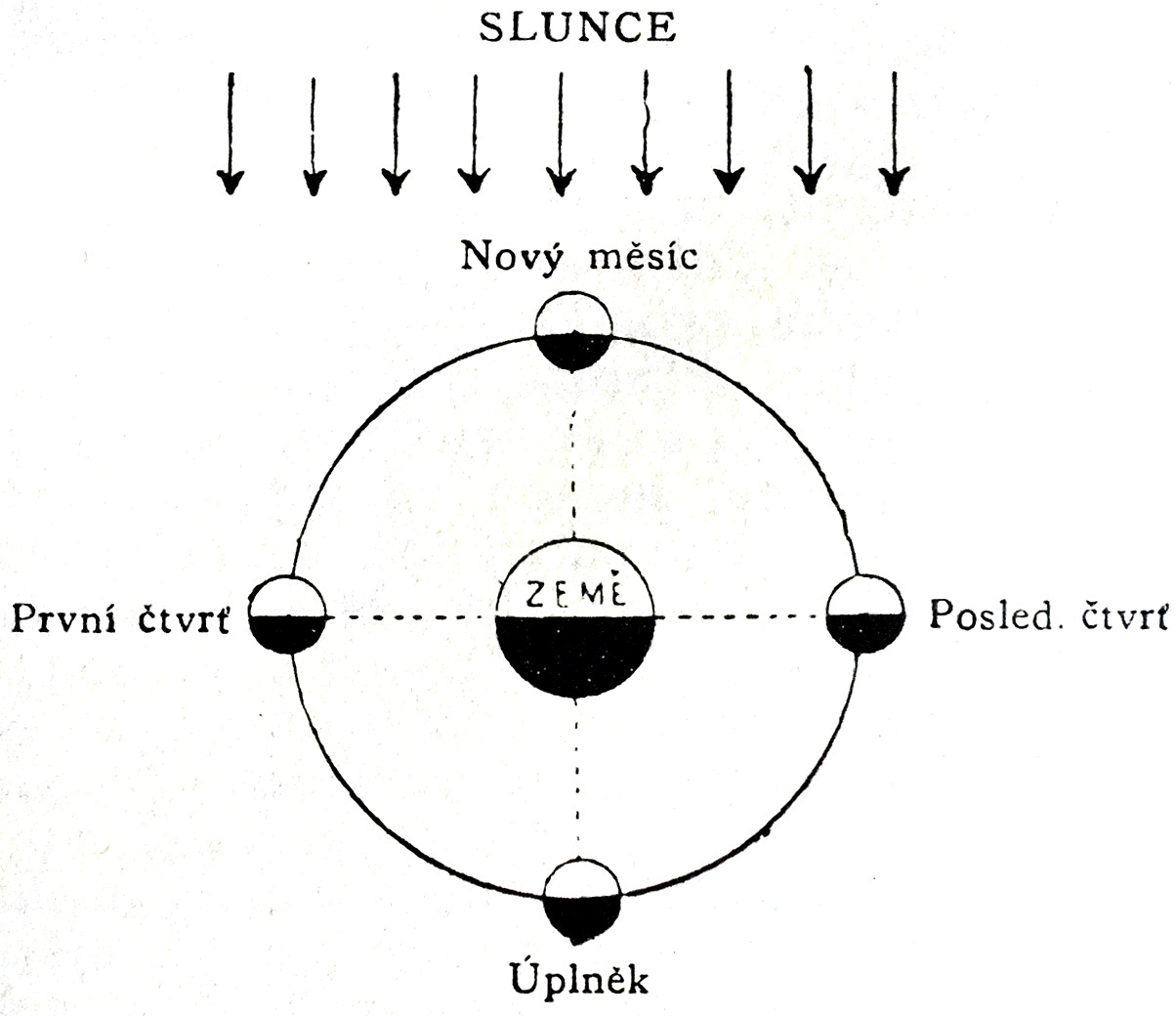 Filelunar Phases Wikimedia Commons Lunar Diagram
