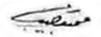 Muhammad Naguib Signature.jpg