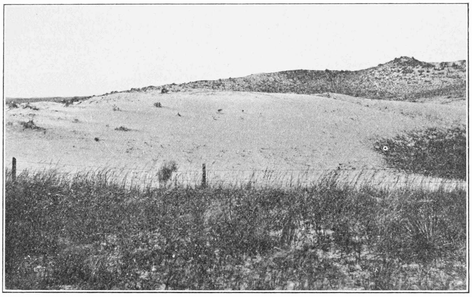PSM V80 D219 Land damaged by overgrazing.png