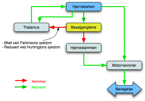 symptomer parkinson