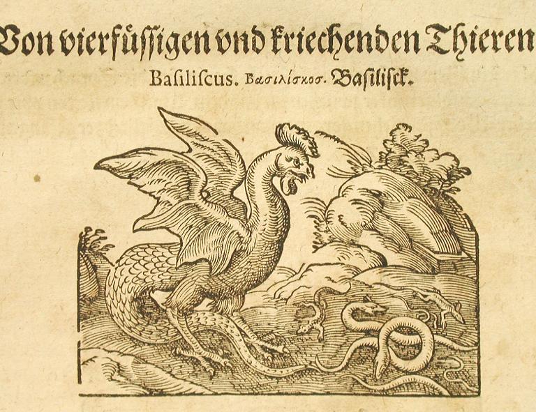 https://upload.wikimedia.org/wikipedia/commons/b/ba/Plinius3.jpg