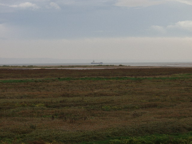 Point of Ayr Nature Reserve - geograph.org.uk - 70637