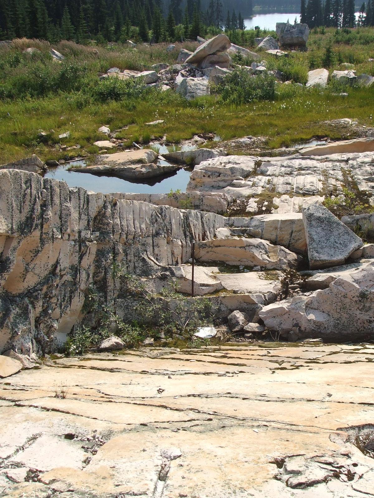 Kakwa Provincial Park And Protected Area Wikipedia