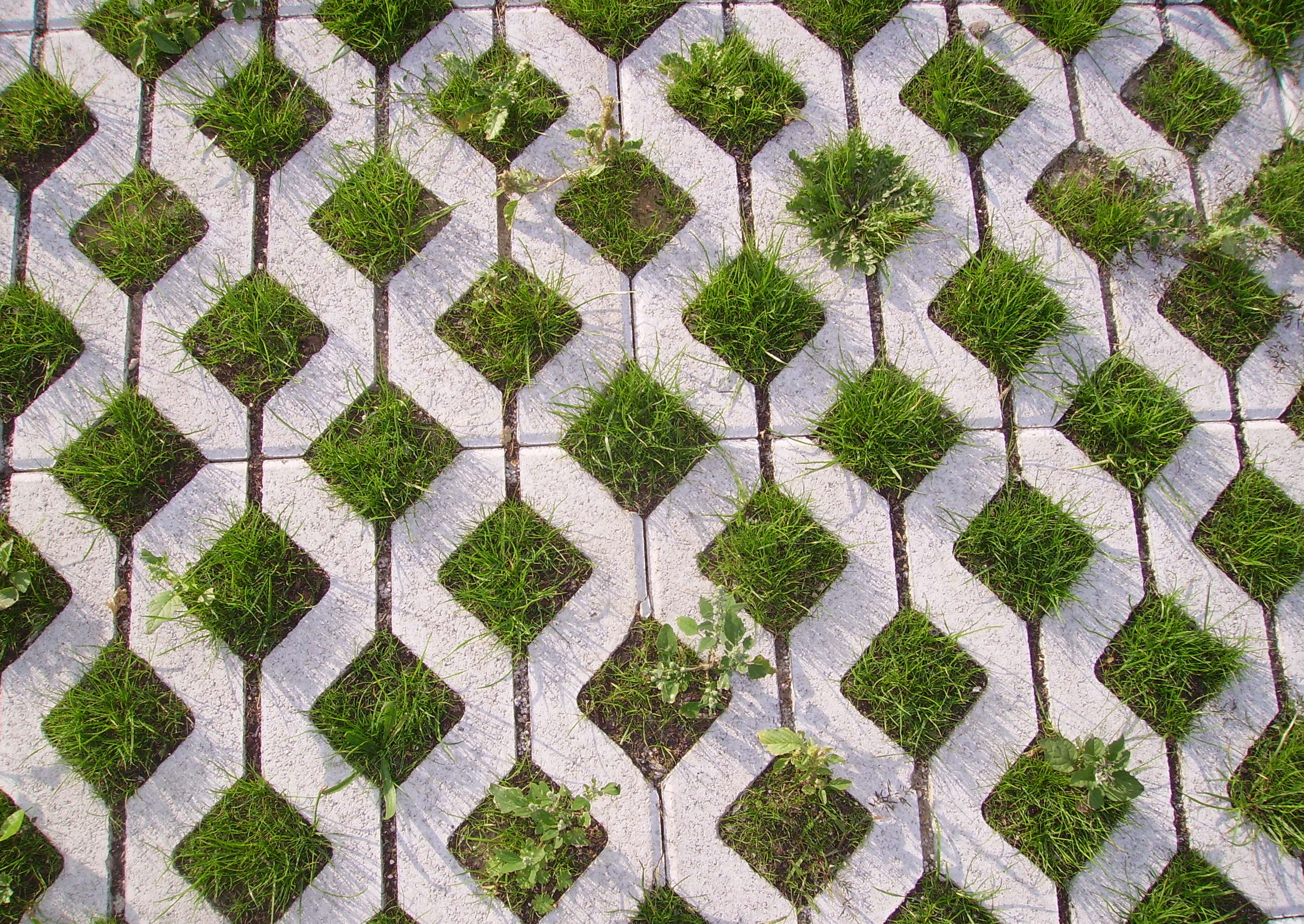Concrete pavers with holes made in them to allow grass to grow through them.  About fifty percent concrete is visible and the remainder is grass.  Each paver is zig zag shaped to create grass squares that are about ten centimeters wide.