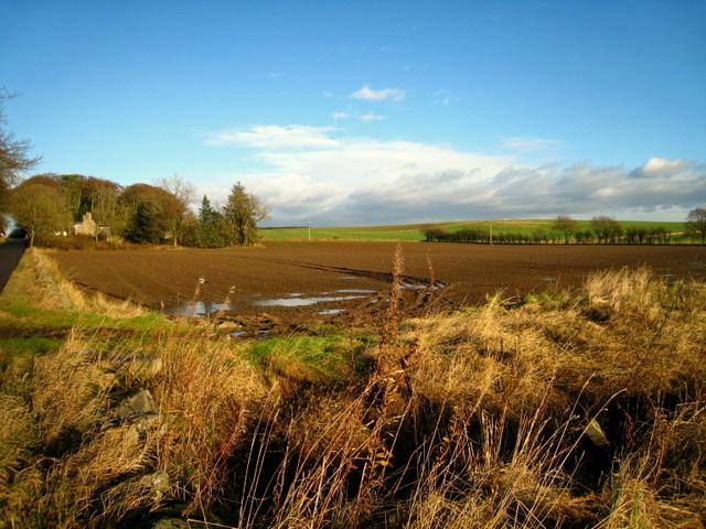 Raxton farm, Haddo House, Aberdeenshire - geograph.org.uk - 619033