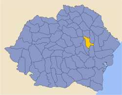 Romania 1930 county Tutova.png