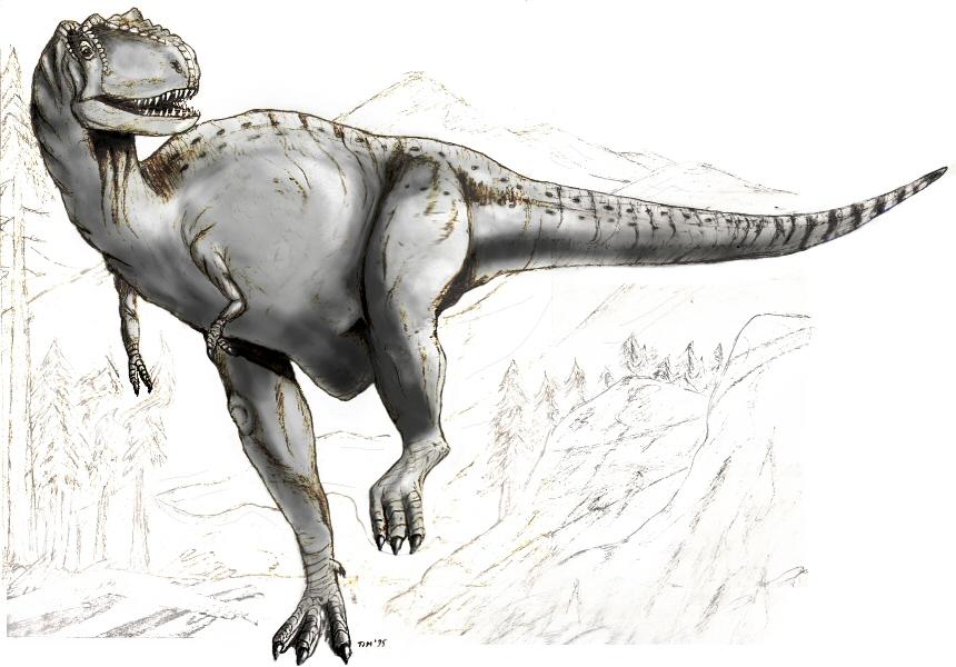 Albertosaurus Wikipedia Bahasa Indonesia Ensiklopedia Bebas