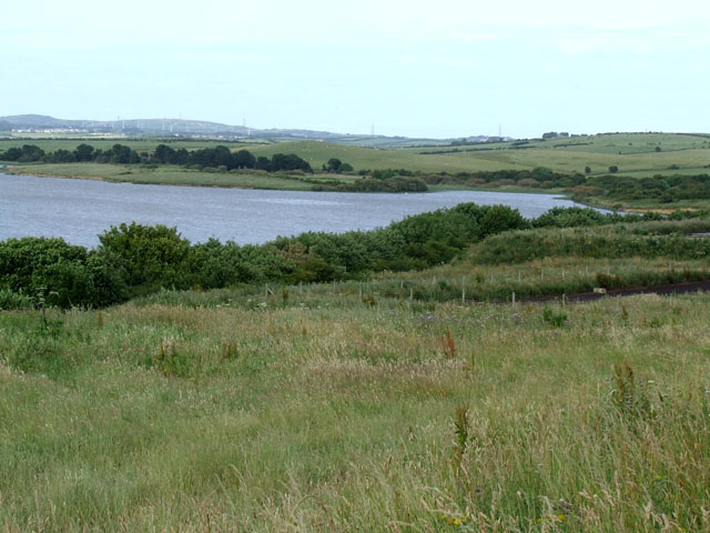 The Southern shore of Llyn Alaw - geograph.org.uk - 197971