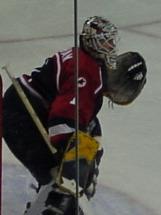 Mike Dunham American ice hockey goaltender