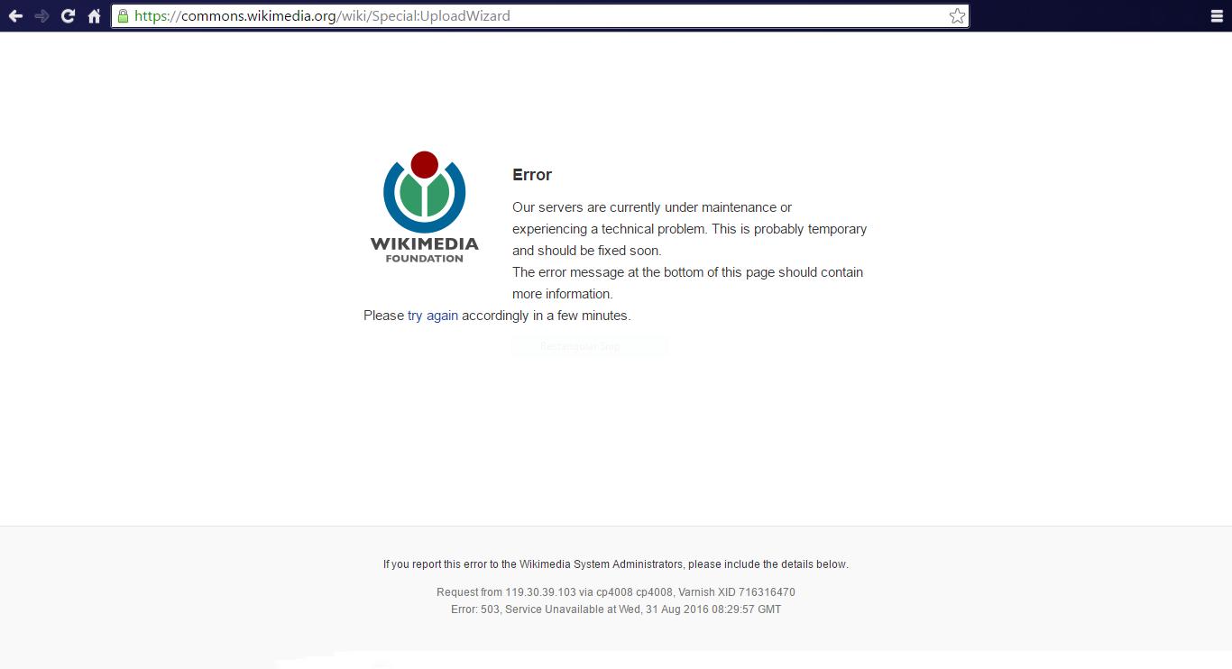 Image result for 503 Service Unavailable Error