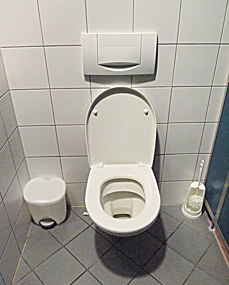 Toilet wikipedia for Commode japonaise