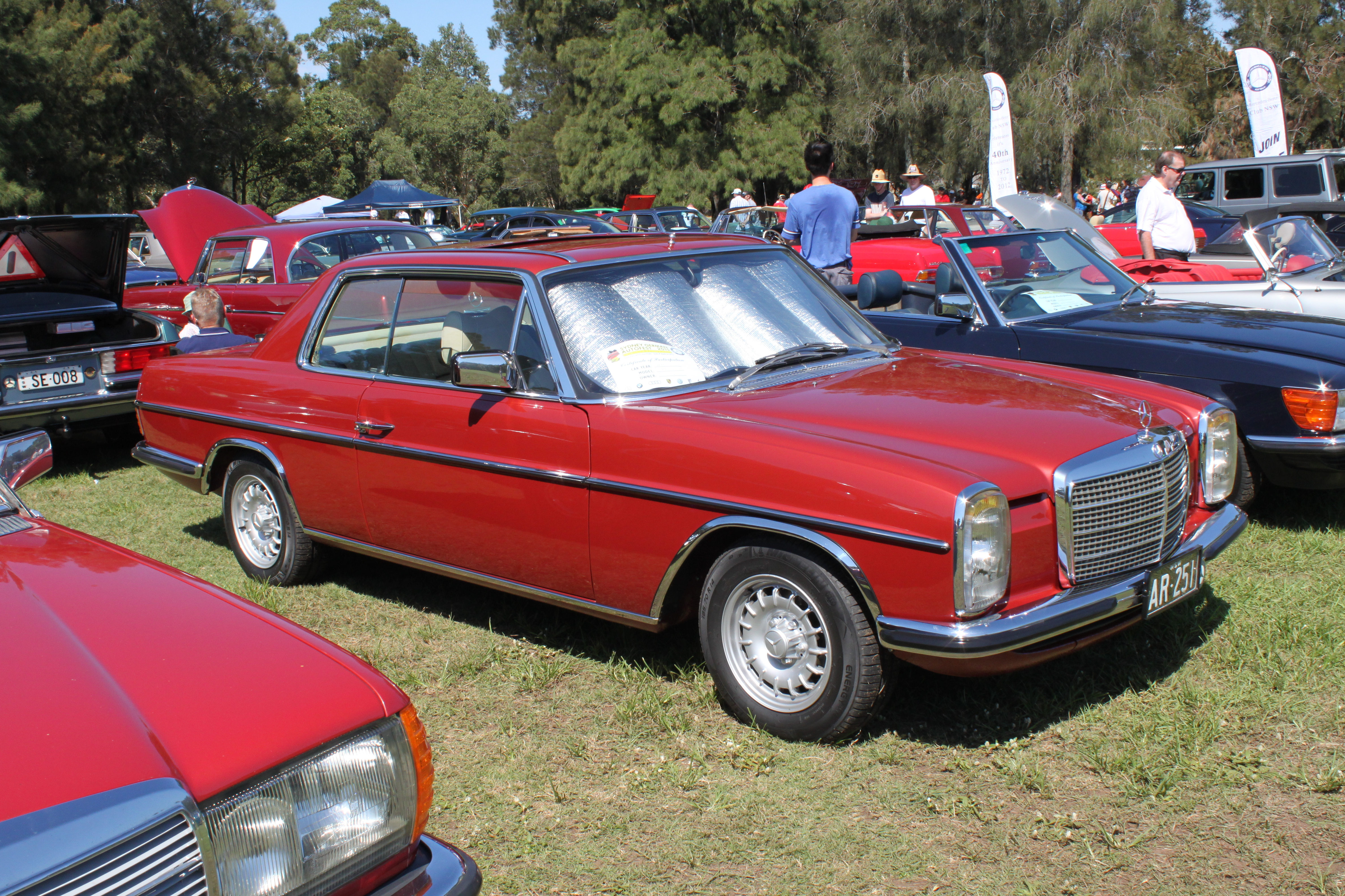 File 1975 Mercedes Benz 280 CE  W 114  coupe  16525103498 on mercedes benz w114