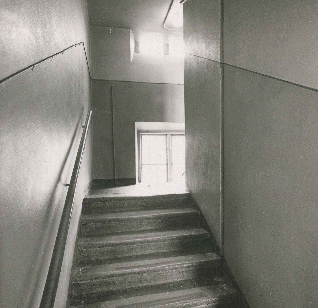 Fileaf Petersens Dokumentation Vildsvinet 1967jjpg Wikimedia