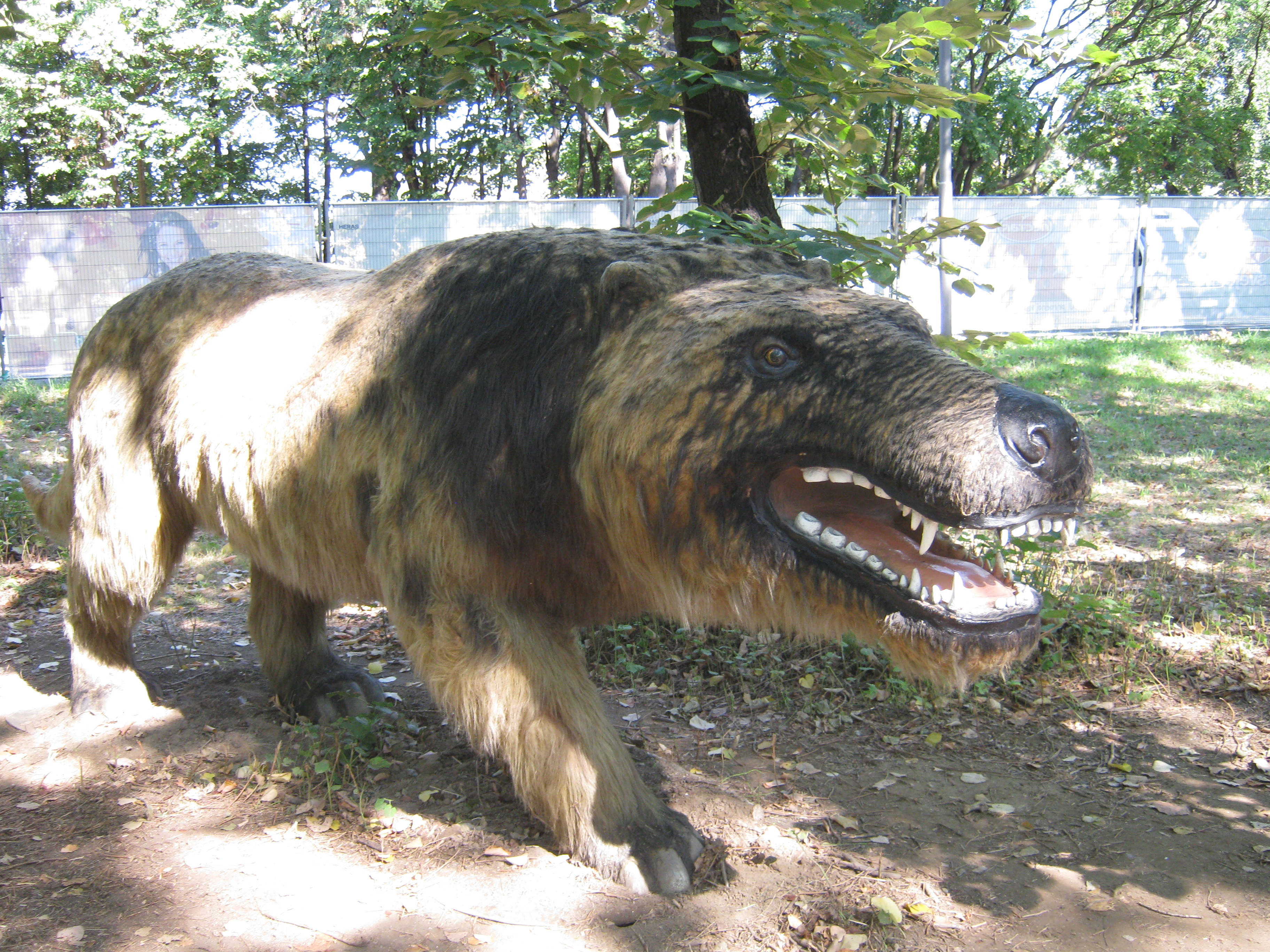 Image result for Andrewsarchus