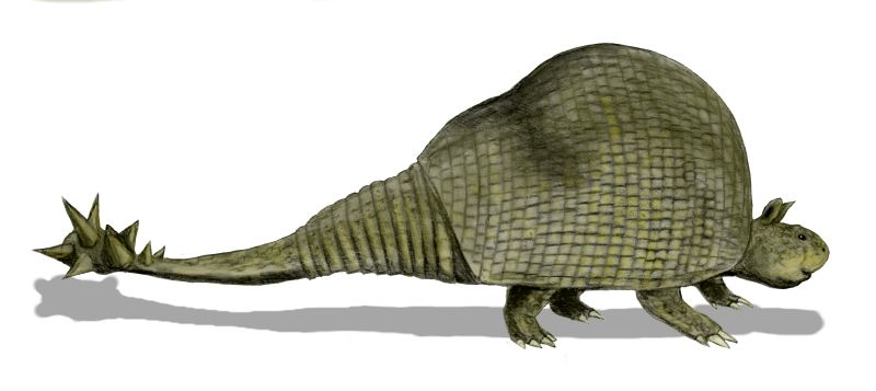 File:Doedicurus BW.jpg - Wikipedia
