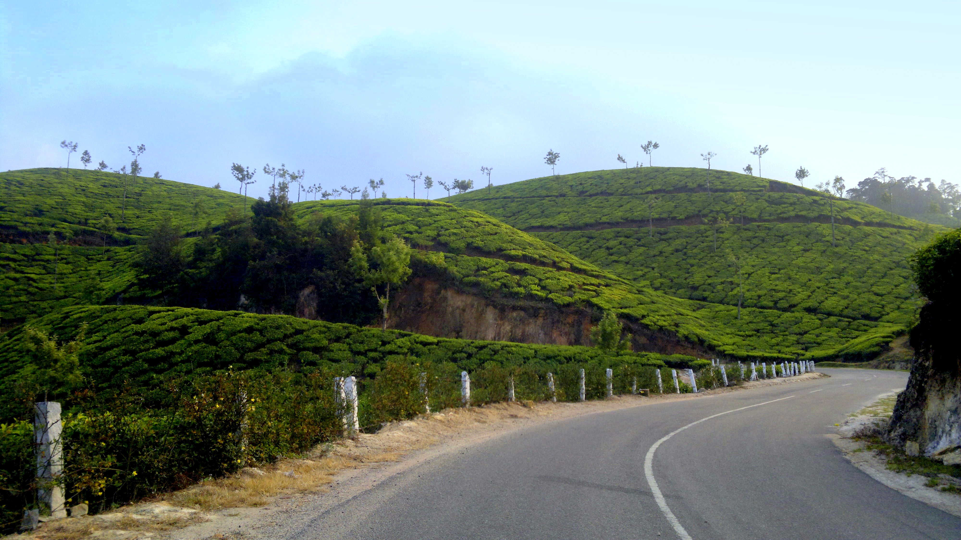 https://upload.wikimedia.org/wikipedia/commons/b/bb/Enroute_suryanelli_-_panoramio.jpg
