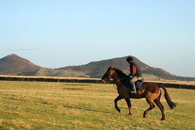 Horse riding on White Law, Scotland