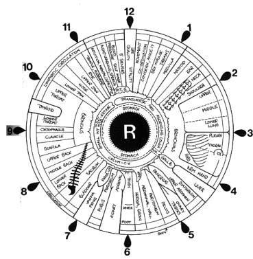 File Iridology Iris Eye Chart Right Mirror Jpg