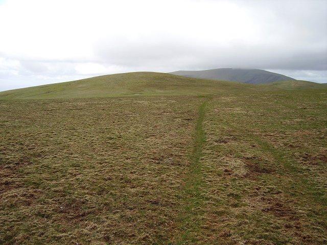 Meall nan Bradan Leathan - geograph.org.uk - 209423