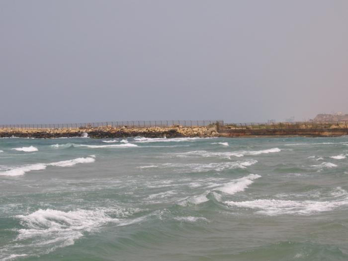 ים תל אביב בחורף
