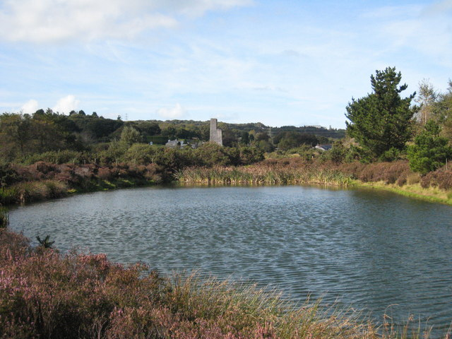 Pond in Bissoe Valley Nature Reserve - geograph.org.uk - 991104