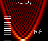 The ground state of a quantum harmonic oscillator has the Gaussian distribution. QHarmonicOscillator.png