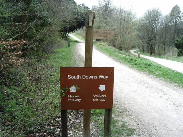Queen Elizabeth Country Park, Horndean - geograph.org.uk - 160350
