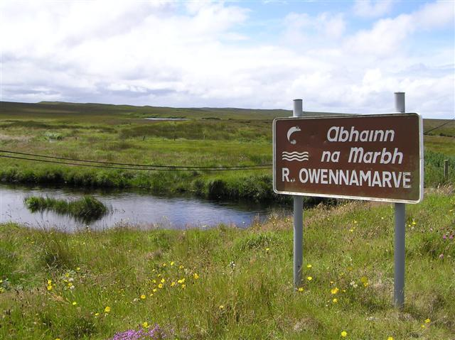 File:River Owennamarve - geograph.org.uk - 500526.jpg