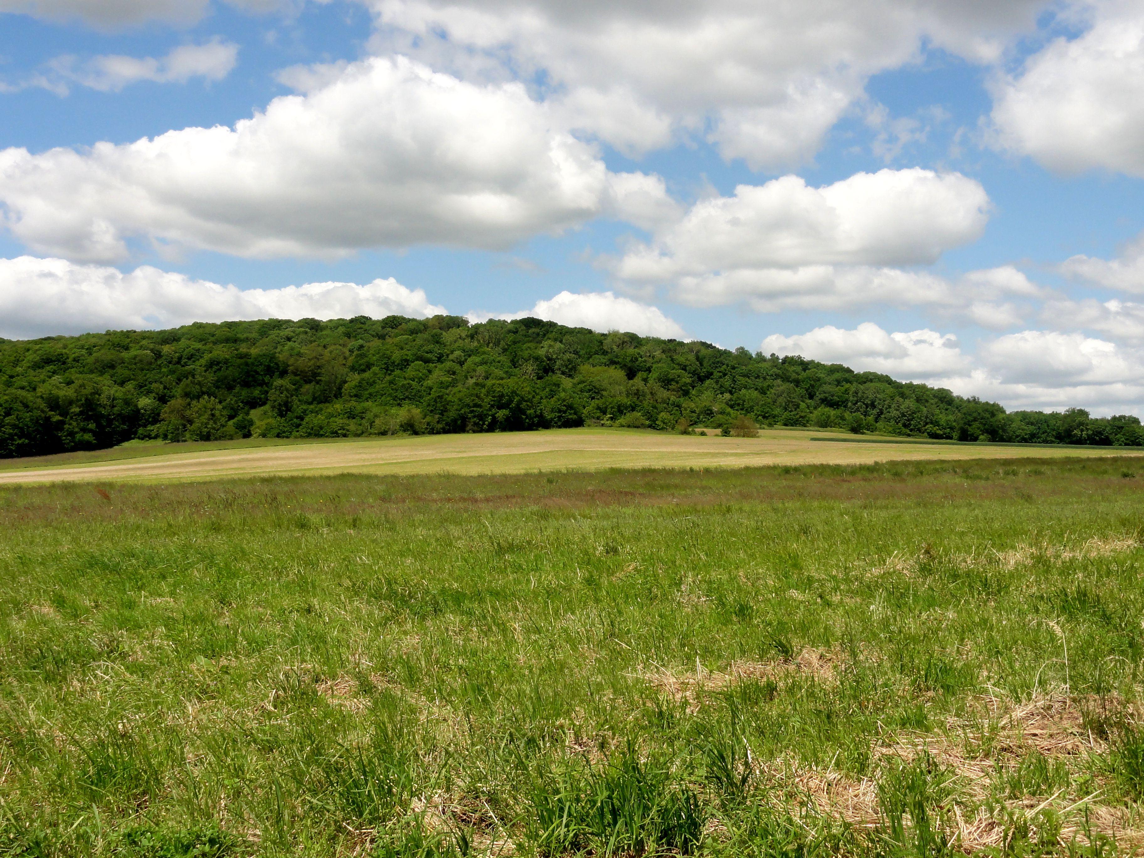 File sacy le grand 60 paysage au nord ouest du village for Agence paysage nord