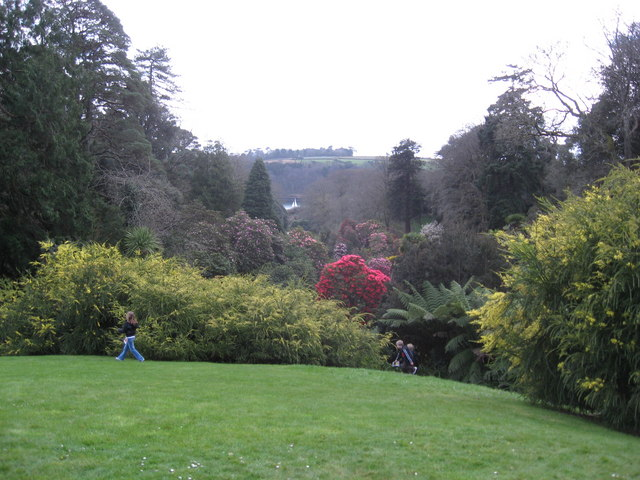 Trebah gardens - geograph.org.uk - 746642
