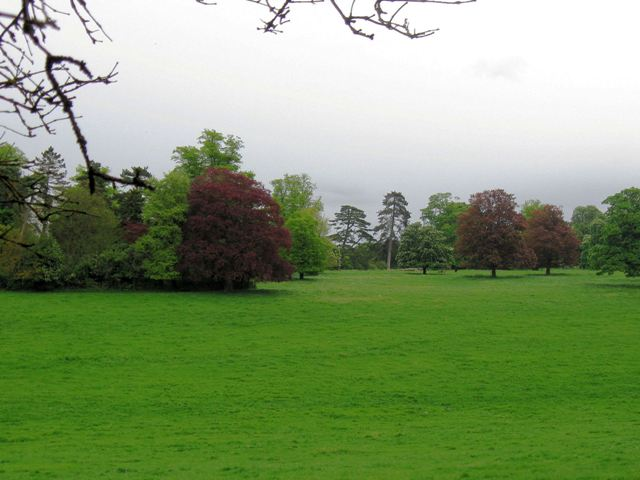 Tring Park - Perhaps the site of a Medieval Open Field - geograph.org.uk - 1342382