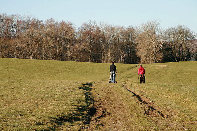 Walkers on Murieston Hill - geograph.org.uk - 693973