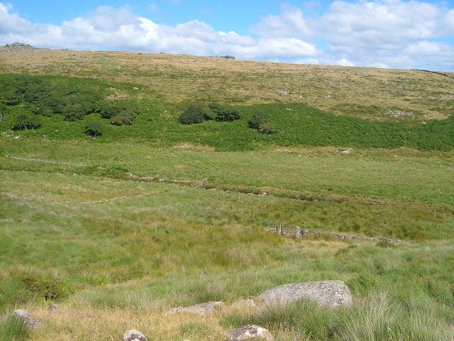 Wistman's Wood and Littaford Tor - geograph.org.uk - 211399