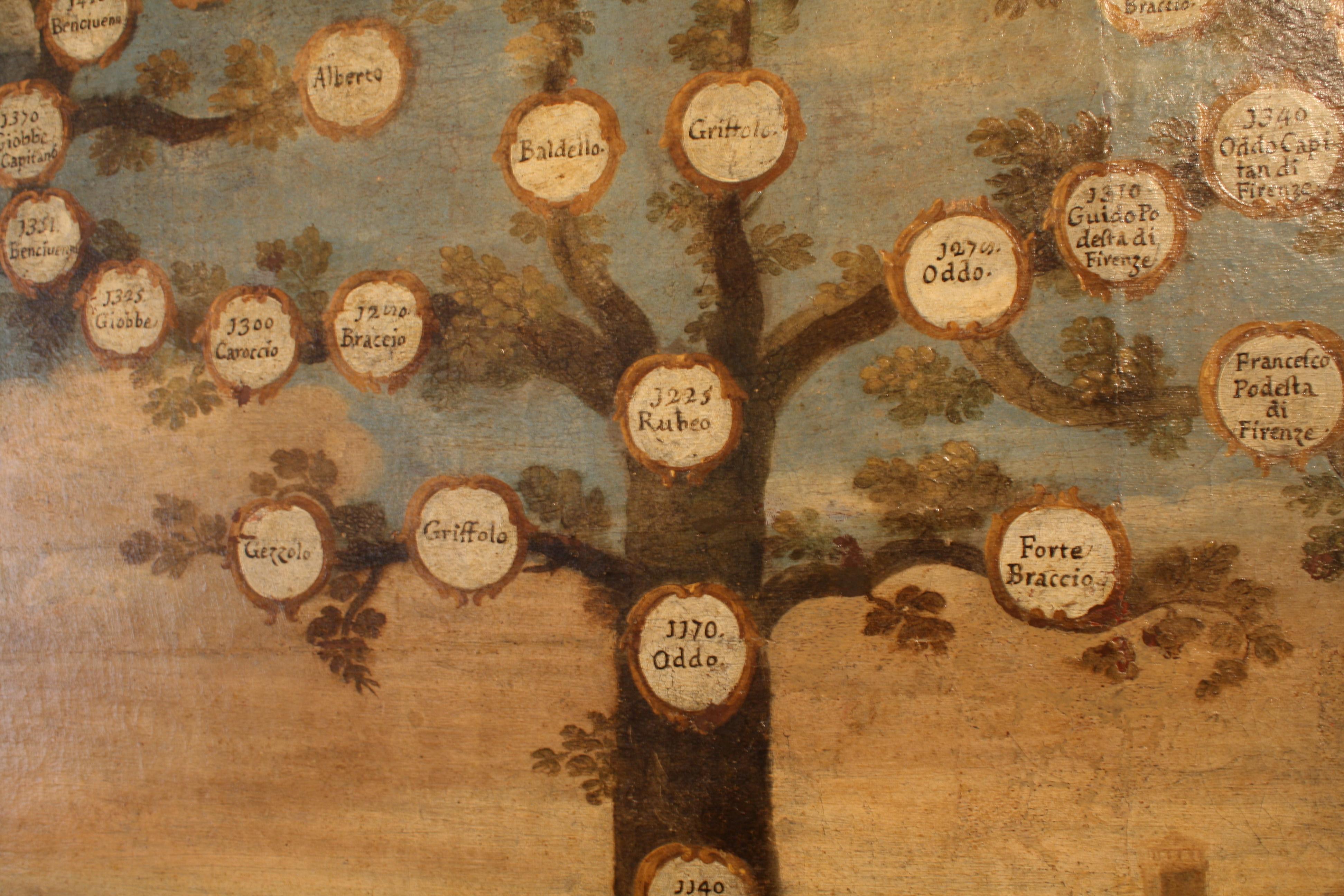 Descrizione albero genealogico-particolare